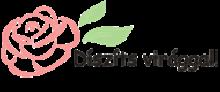 Díszíts virággal! - Kreatív Webáruház