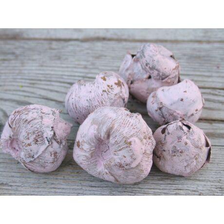 Száraz termés kókuszvirág csúcs rózsaszínben