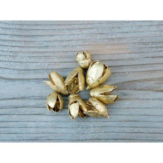szaraz-termes-arany-bakuli-1