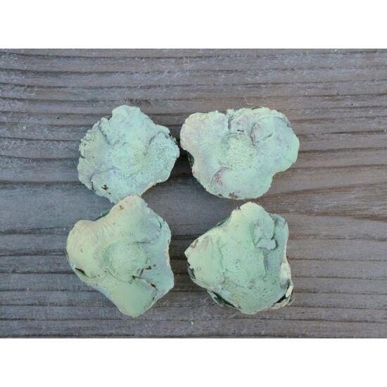 kokuszvirag-pasztell-zold-termes-1