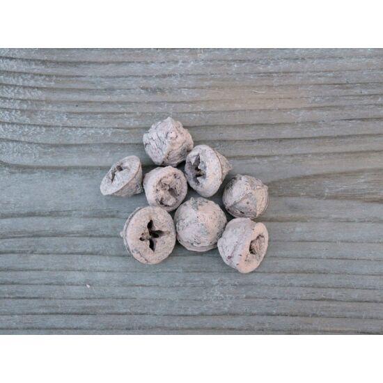 puder-eukaliptusz-szaraz-termes-1