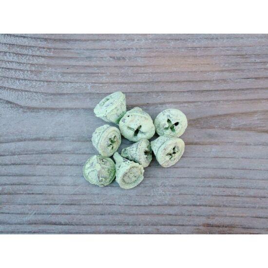 pasztell-zold-eukaliptusz-szaraz-termes-1