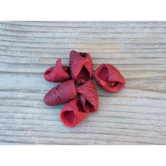 szaraz-termes-lali-piros-1