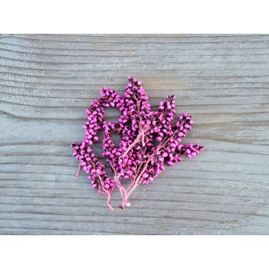 bogyos-ag-ciklamen-szaraz-termes-1