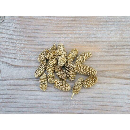 eger-szaraz-termes-arany-1