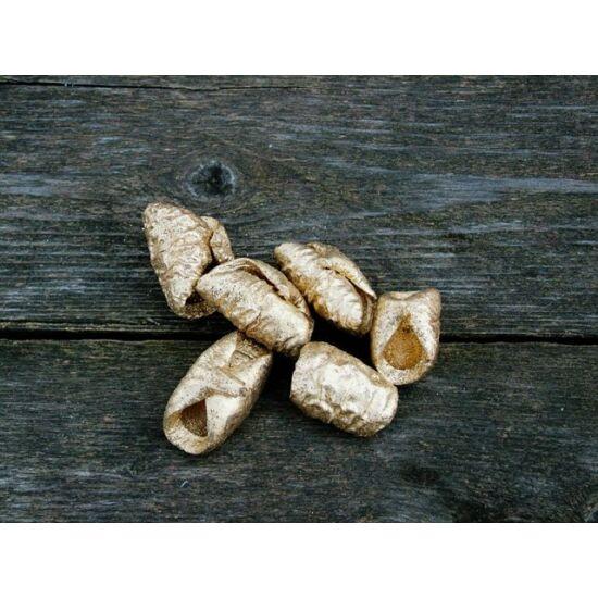 Száraz lali termés arany színben