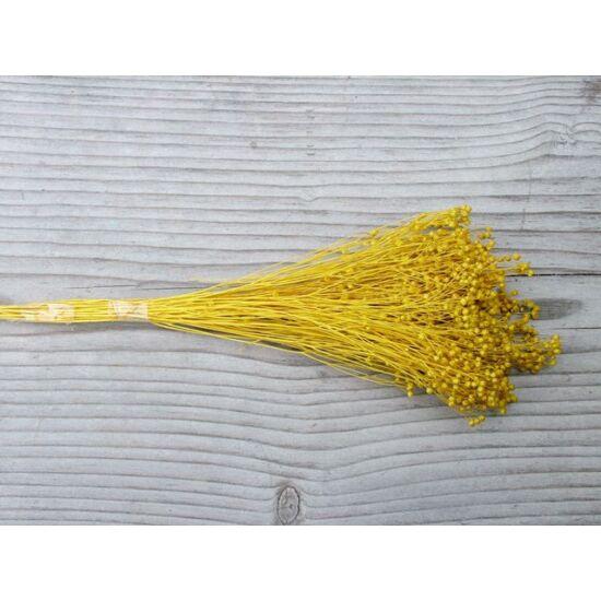 szaraz-virag-fatyol-sarga-1