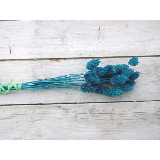 Szárazvirág kék színű fénymag