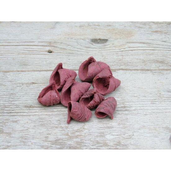 Száraz termés sötét mályva lali