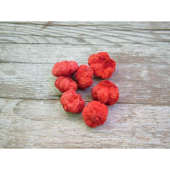 Száraz termés fokhagyma élénk piros szín