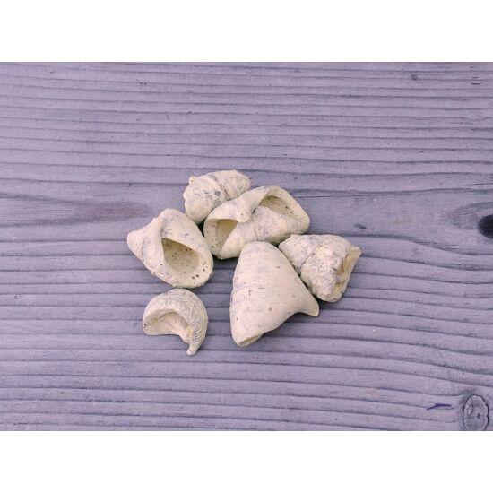 szaraz-termes-lali-sarga-1