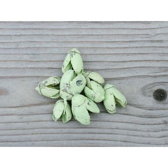 szaraz-termes-bakuli-pasztell-zold-1